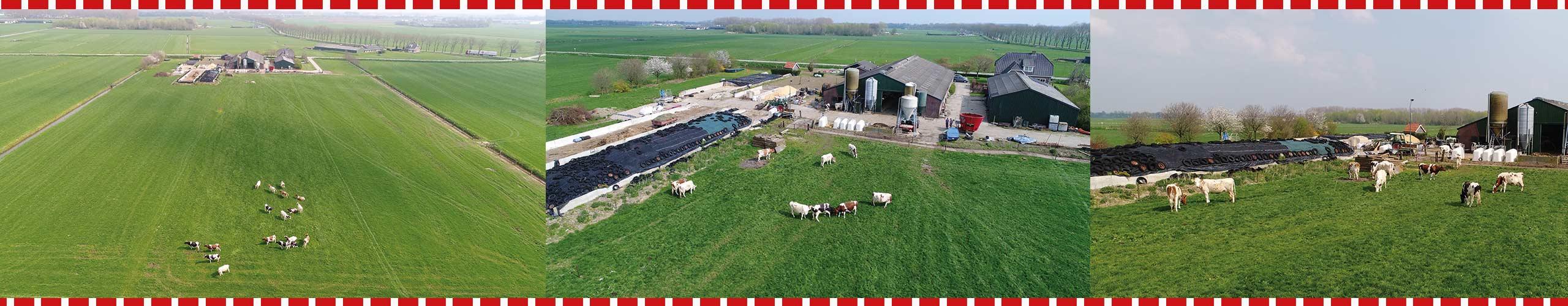 De Weidegang - IJsboerderij De Schoonheuvel - Hedel